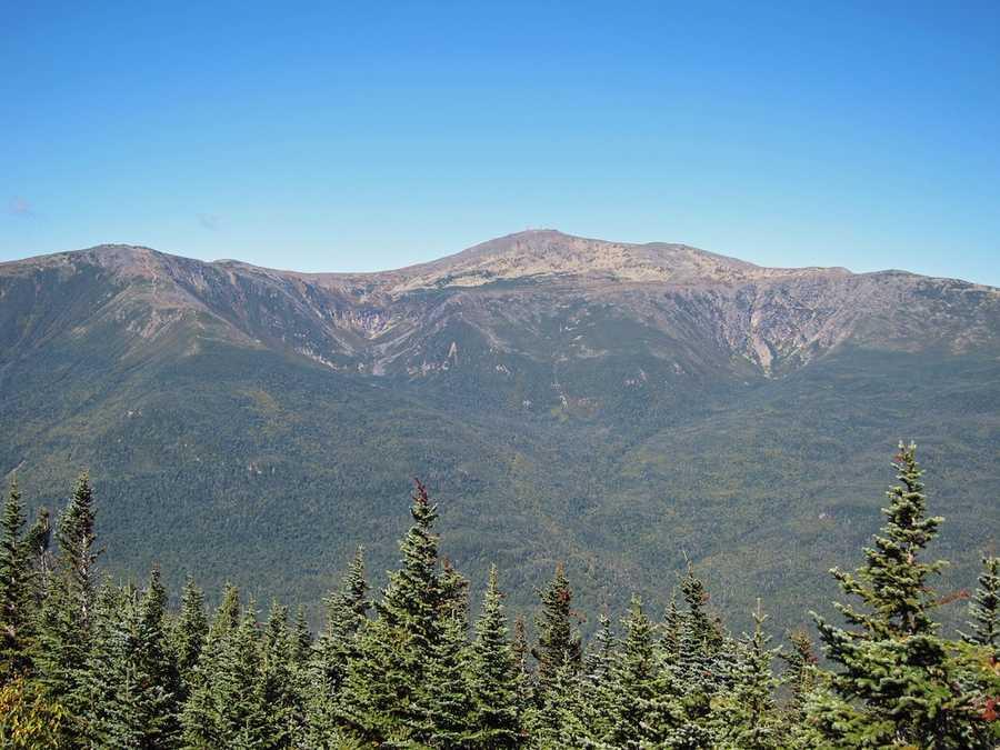 Wildcat, D peak