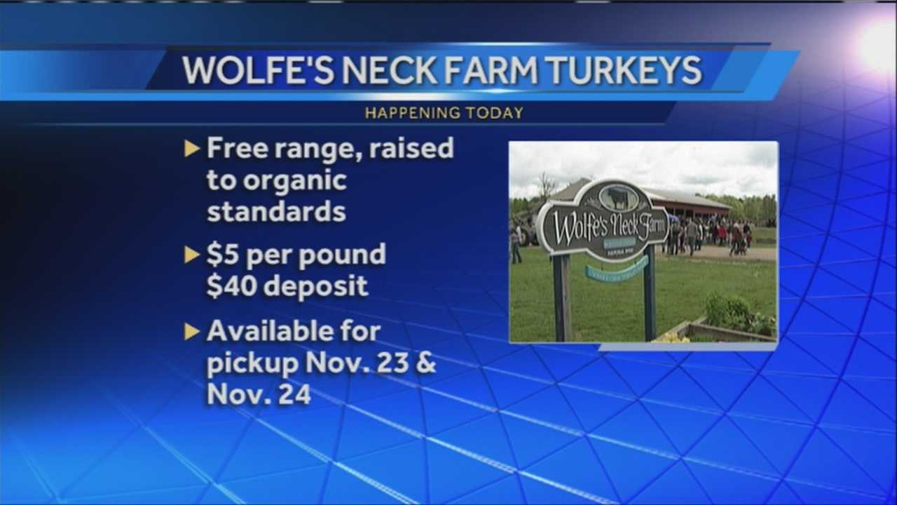 With 19 days until Thanksgiving, Freeport's Wolfe's Neck Farm is offering farm fresh turkeys for your holiday meal. WMTW News 8's Morgan Sturdivant talks with the farm's livestock manager about what it takes to raise a free-range bird.