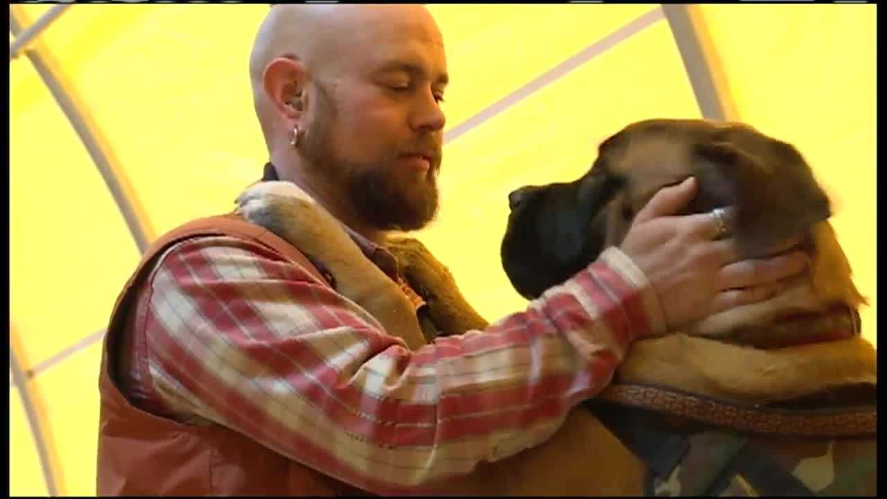 A group of service dogs graduated from their program and are going home to Maine veterans.