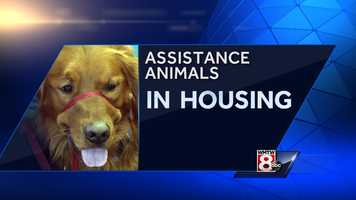 The Maine Real Estate Managers Associations provided the Service Dog Task Force with data about the number of assistance animals, including service dogs, living in rental housing units.