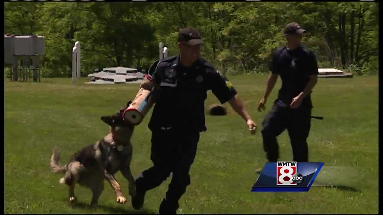 The newest four-legged members of the police force took part in an annual graduation ceremony on Friday.