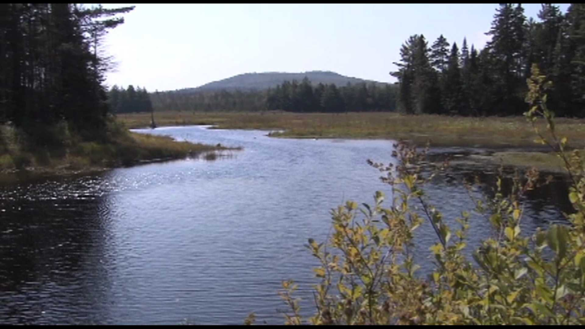 President designates National Monument in northern Maine woods