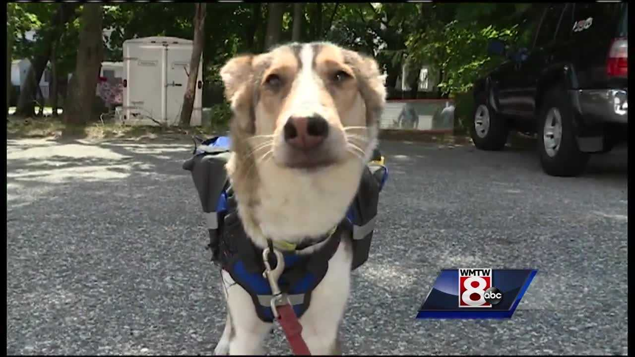 A Portland man who took a one-way trip to adopt a dog on a kill list in Minnesota is embarking on a new journey Saturday: He will hike the Appalachian Trail with his pet in tow.