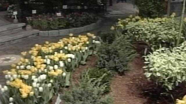 Portland Flower Show