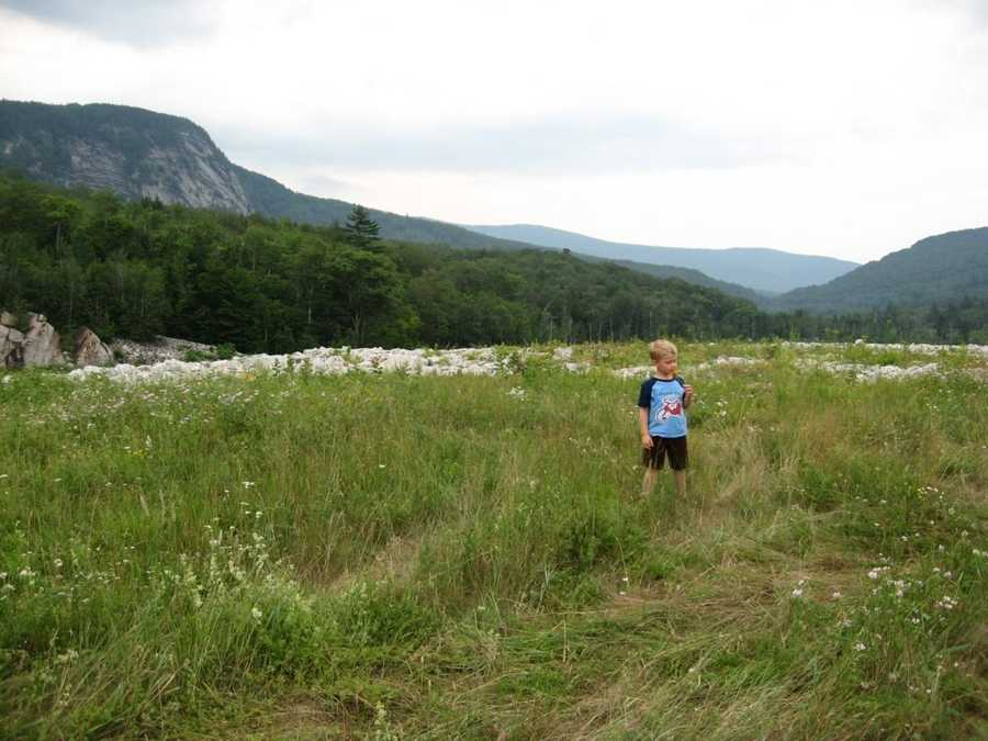 Benton attractions: Hiking&#x3B; White Mountain National Forest