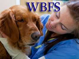 HB 339 - This law allows the state veterinarian to employ a meat inspection services administrator, establishes a meat inspection program fund, and makes an appropriation to such fund. - Takes effect August 5, 2011
