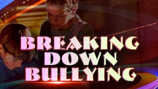 Breaking Down Bullying (Breaking Down Bullying.jpg) - 31010648