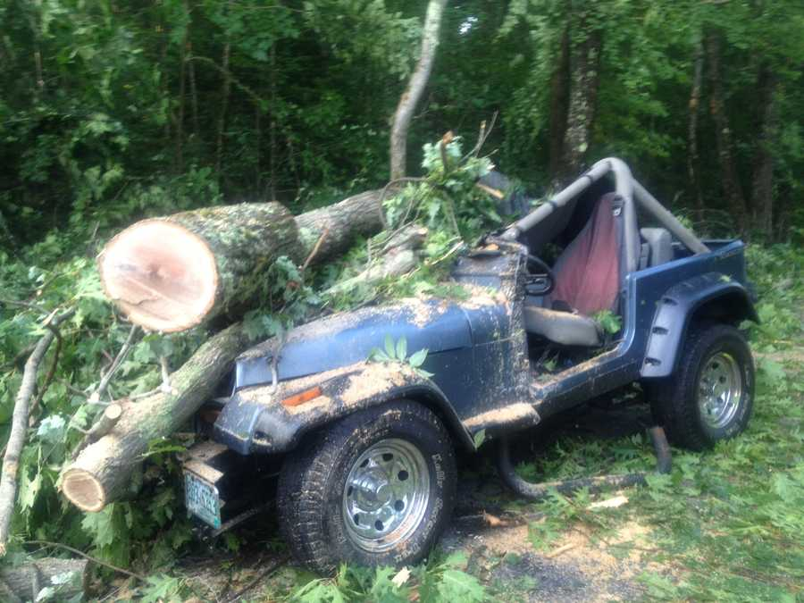 A Jeep is crushed by a tree on College Hill Road in Hopkinton.