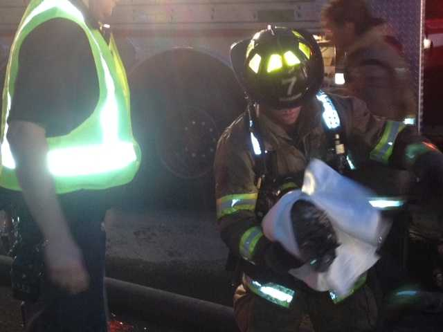 Classy was one of two cats rescued from the Central Street fire.