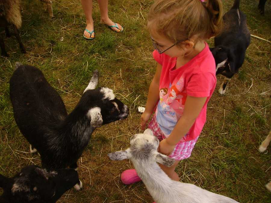 The Stratham Fair was held from July 19-22.