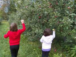 No. 2: Windy Ridge Orchard in North Haverhill, N.H.