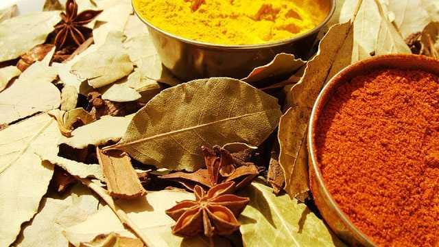 Curry blurb