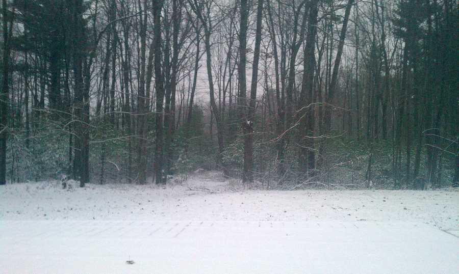Snow in Auburn