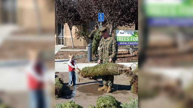 We asked viewers on WMUR.com and on Facebook about the best spots to grab that Christmas tree.