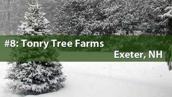 No. 8) Tonry Tree Farms, Exeter