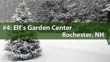 No. 4) Elf's Garden Center, Rochester