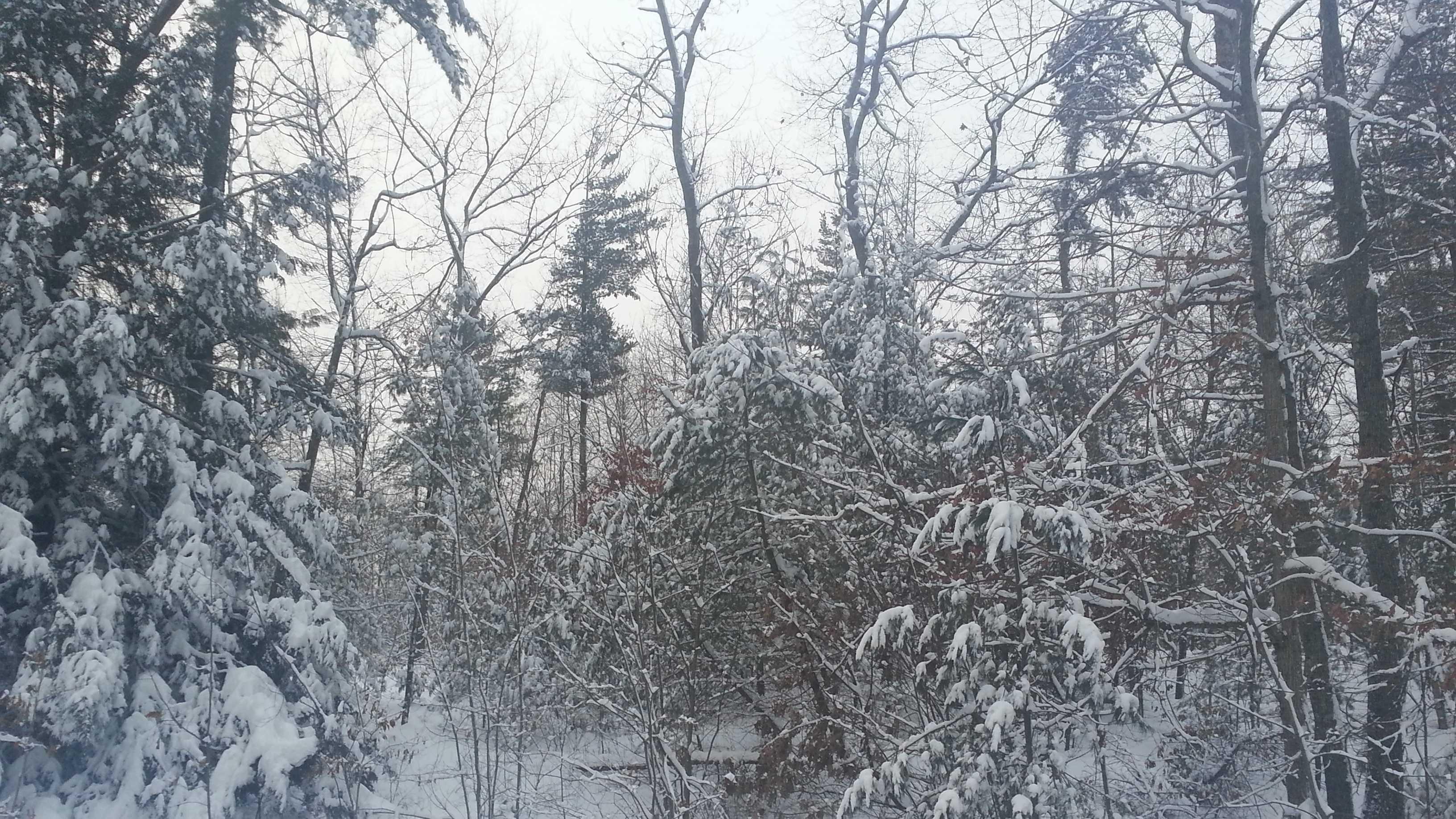NH snowfall 123012