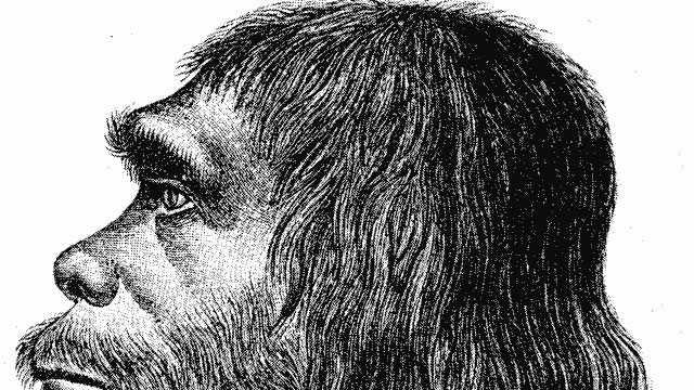 Neanderthal-generic-123.jpg