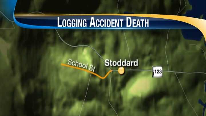 Deadly logging accident