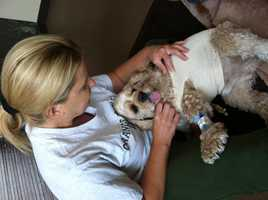 """Growing up, Jennifer's pets included dogs and parakeets. """"I have a cocker spaniel, Fletcher, now. He just went through back surgery but is doing great,"""" Jennifer said."""