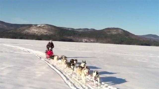 A boy from England came to New Hampshire to experience dog sledding on Squam Lake.