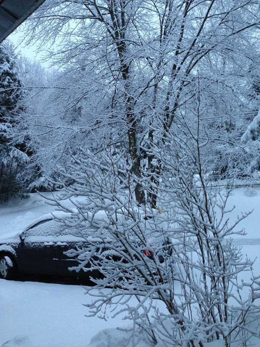 Another winter storm brought snow to New Hampshire on Sunday.Here is a shot from a u local user in Weare.