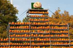 """Jean's favorite time of the year in New England is fall. """"Bring on the pumpkins,"""" said Jean."""