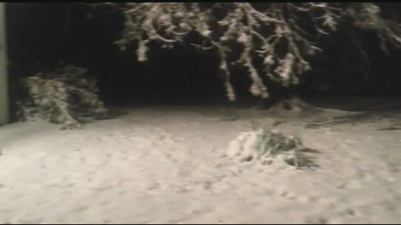 Snow was spotted in Littleton on Saturday evening!