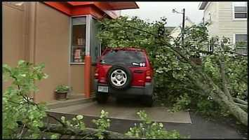 An SUV whose driver was waiting at the Dunkin' Donuts drive-through window in Islington Street was struck by a tree on Monday afternoon.