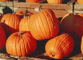 The pumpkin became the state fruit in 2006.