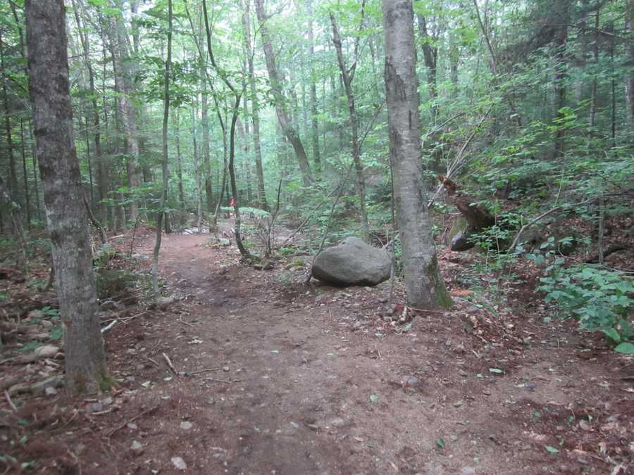 Tie-4) The Old Bridle Trail on Mt. Lafayette.