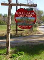 13) Hackleboro Orchards in Canterbury