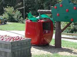 12) Apple Hill Farm in Concord