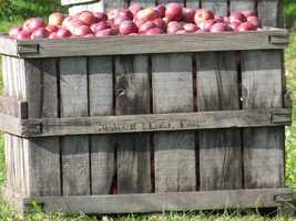 5) Meadow Ledge Farm in Loudon