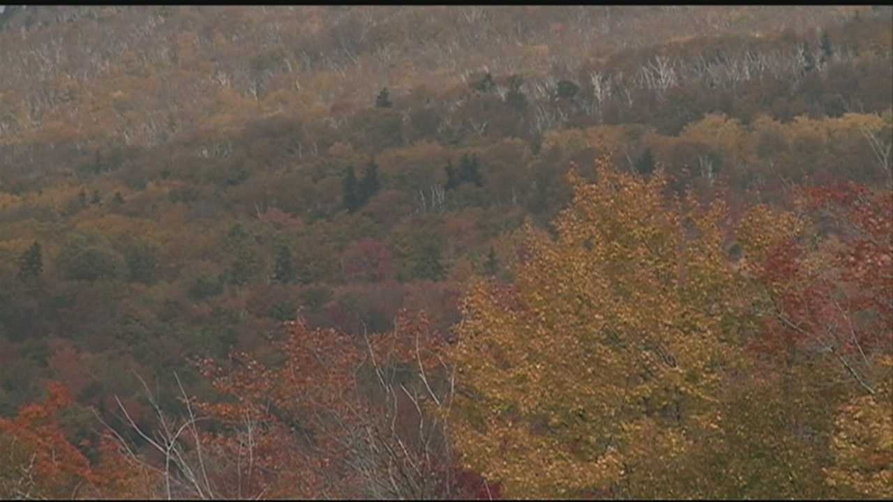 White Mountains still open despite federal shutdown