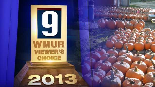 We asked our viewers for their choice of the best pumpkin patches in New Hampshire!