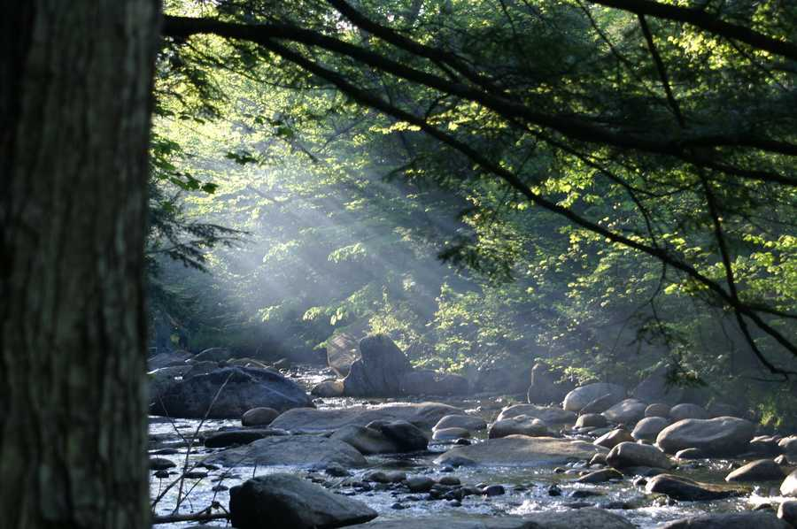 The Lost River Reservation is tucked away in Kinsman Notch in North Woodstock.