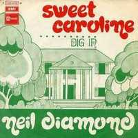 Every game, fans sing along to Sweet Caroline by Neil Diamond in the middle of the eighth inning.