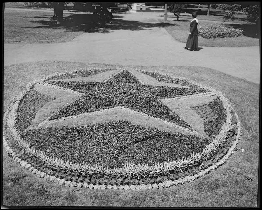 Flower bed in Public Garden