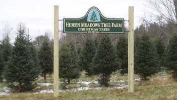 Tie-10) Hidden Meadows Tree Farm in Bath