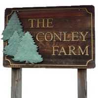 Tie-10) Conley Tree Farm in Farmington