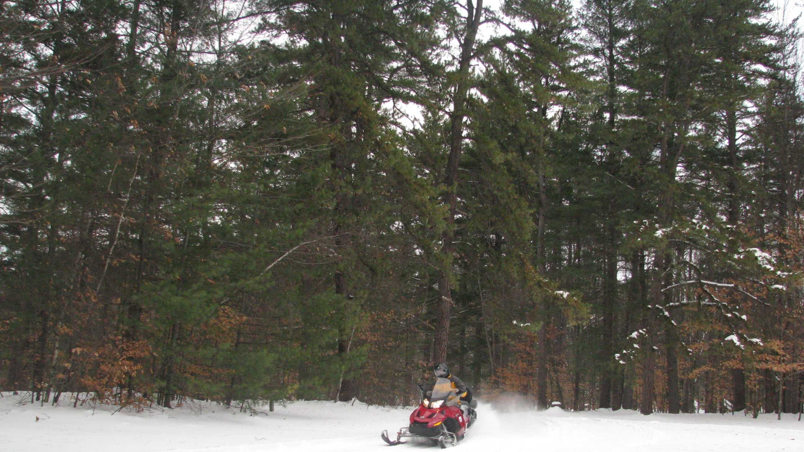 Snowmobile in Ossipee