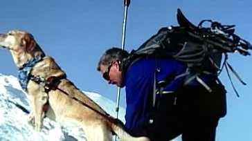 img-Nashua seeing eye dog dies