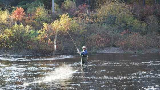 intermediate fly fishing weekend for women planned, Fly Fishing Bait