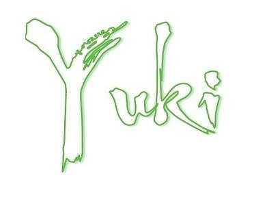 15 tie) Yuki Japanese Grill in Manchester