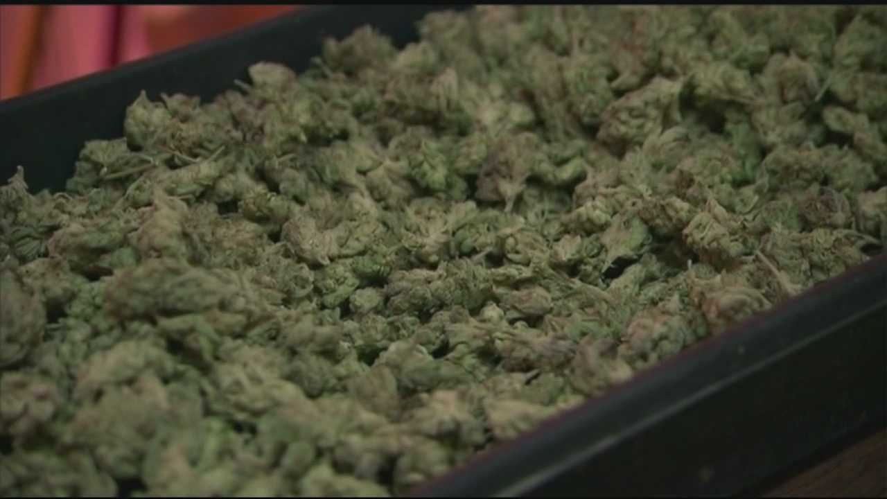 Support for marijuana legalization grows