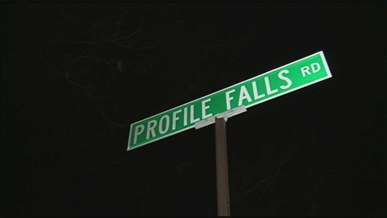 Officials say they believe someone dared the 32-year-old to jump into Profile Falls in Bistol.