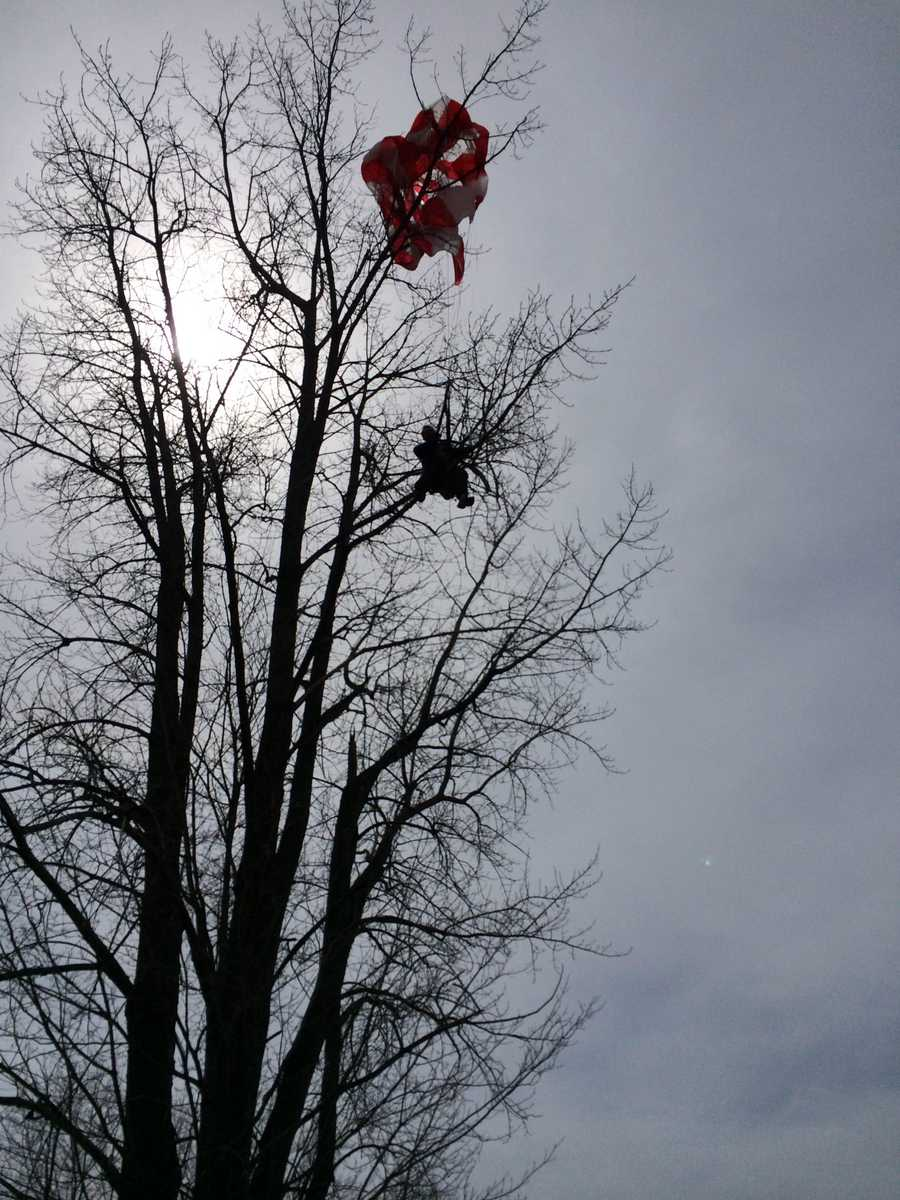 The pilot of a plane that crashed Friday afternoon on Interstate 89N in Highgate, Vt. dangles from a tree.
