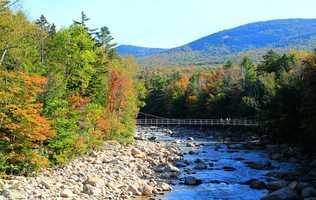 40) LincolnPercent of population born in New Hampshire: 50.3%