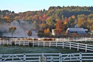 35 tie) SomersworthPercent of population born in New Hampshire: 52.1%